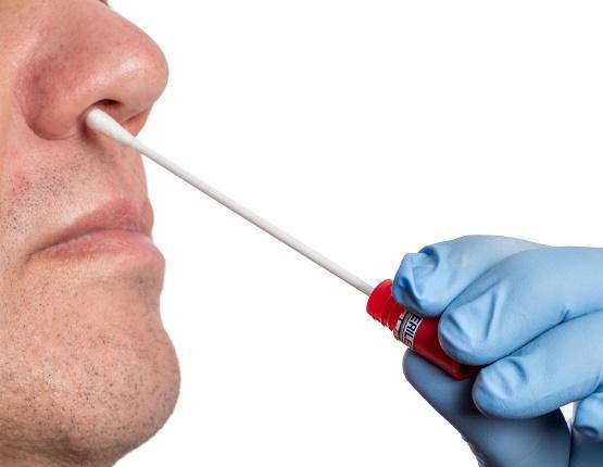 Man taking swab sample from his nose
